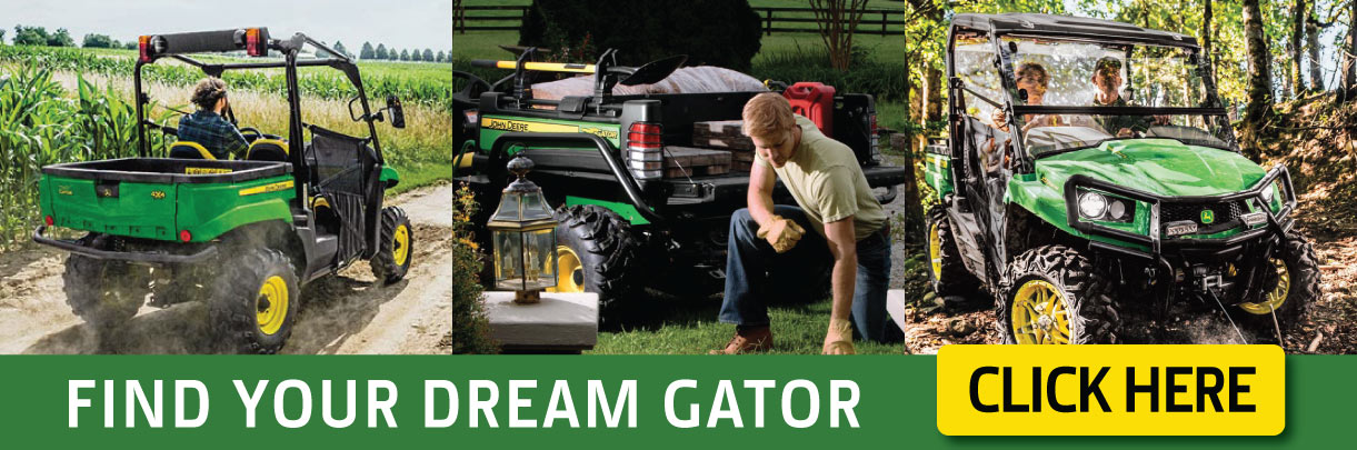 Find Your Dream Gator